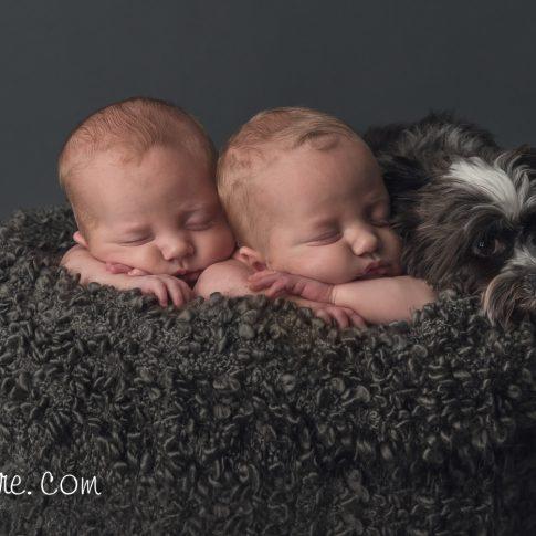 Cochrane calgary newborn photographer