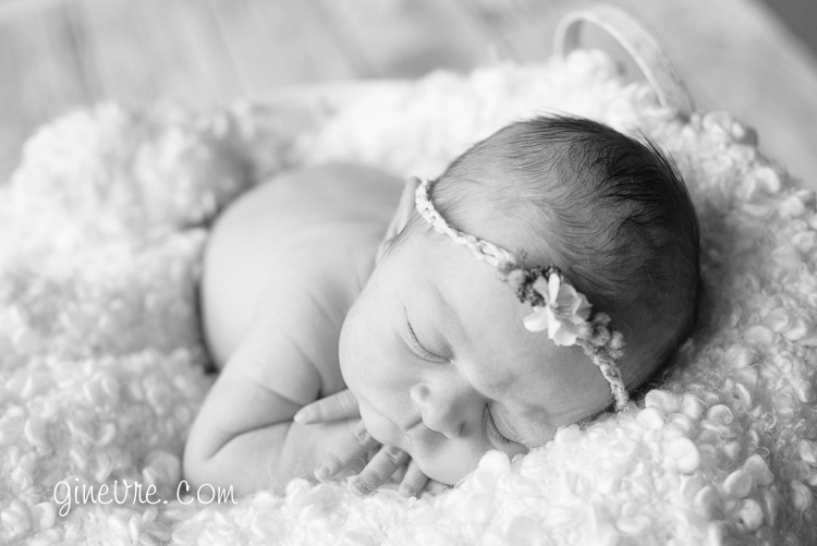 Canmore newborn photographer