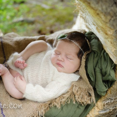 canmore newborn baby photographer