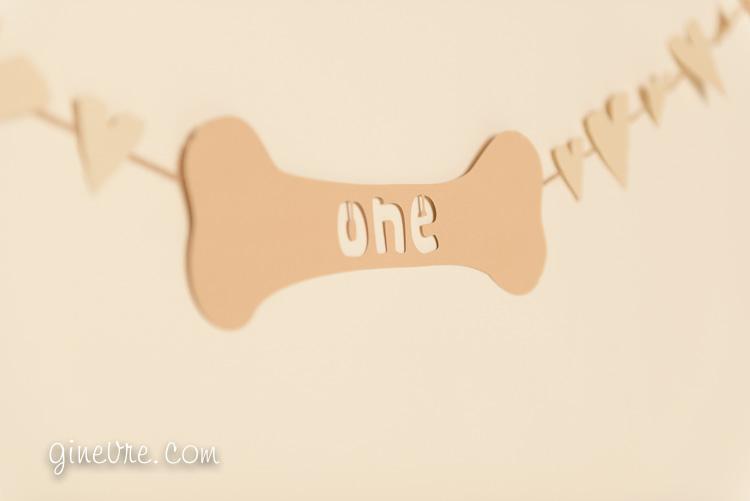 dog_cakesmash_oneyear-2