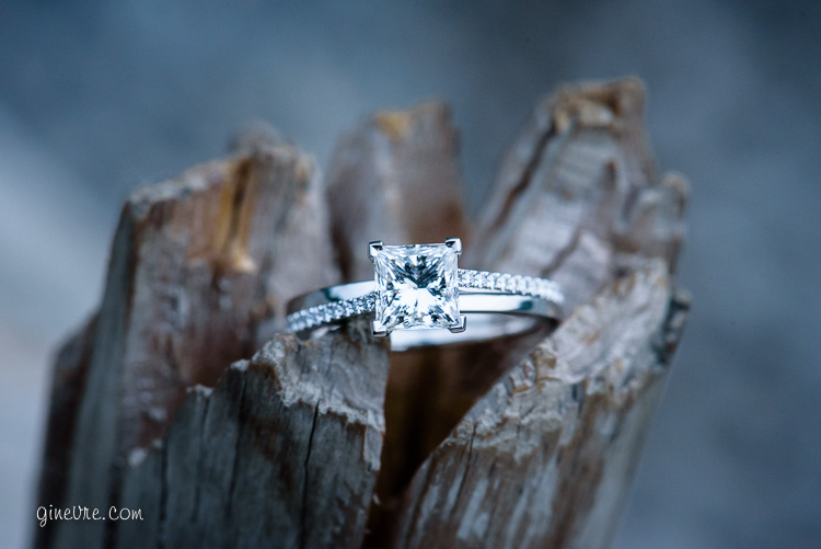 banff_proposal_engagement_cd-11