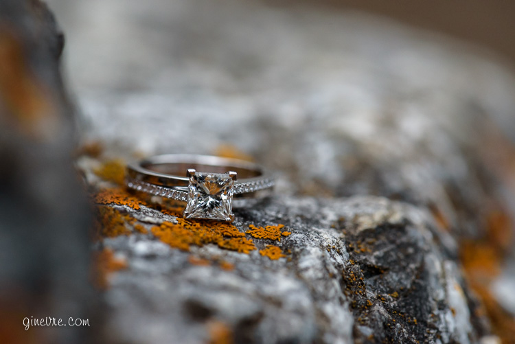 banff_proposal_engagement_cd-8