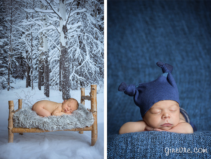 bow valley newborn